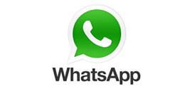 info-whatsapp